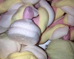 Beregoed - Pralines, Chocolade, Confiserie - Confiserie